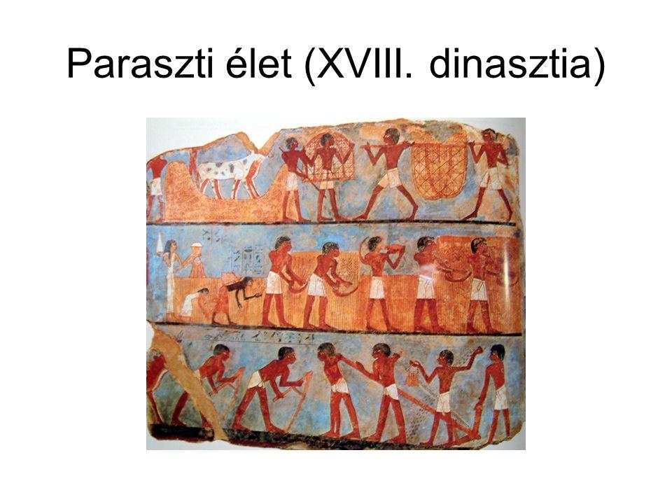 Paraszti élet (XVIII. dinasztia)