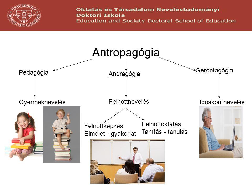 Antropagógia Pedagógia Andragógia Gerontagógia Gyermeknevelés Felnőttnevelés Időskori nevelés Felnőttképzés Elmélet - gyakorlat Felnőttoktatás Tanítás