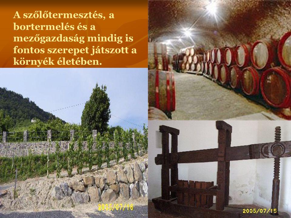 A szőlőtermesztés, a bortermelés és a mezőgazdaság mindig is fontos szerepet játszott a környék életében.