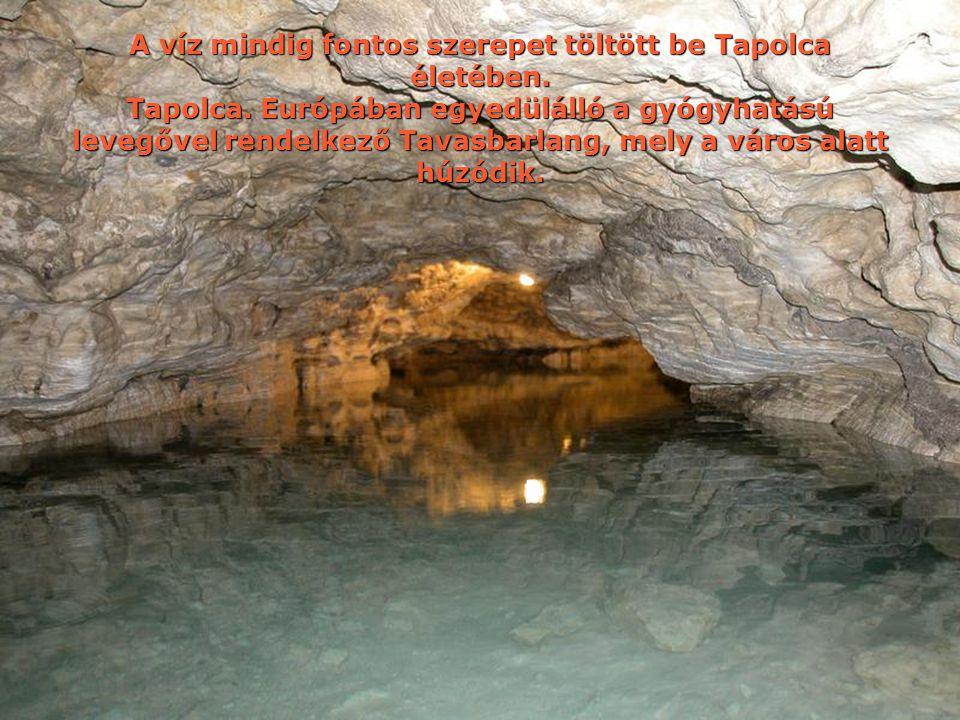 A víz mindig fontos szerepet töltött be Tapolca életében.