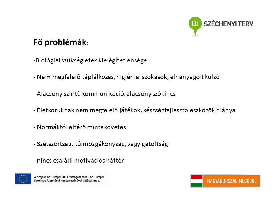 Fő problémák : -Biológiai szükségletek kielégítetlensége - Nem megfelelő táplálkozás, higiéniai szokások, elhanyagolt külső - Alacsony szintű kommunik