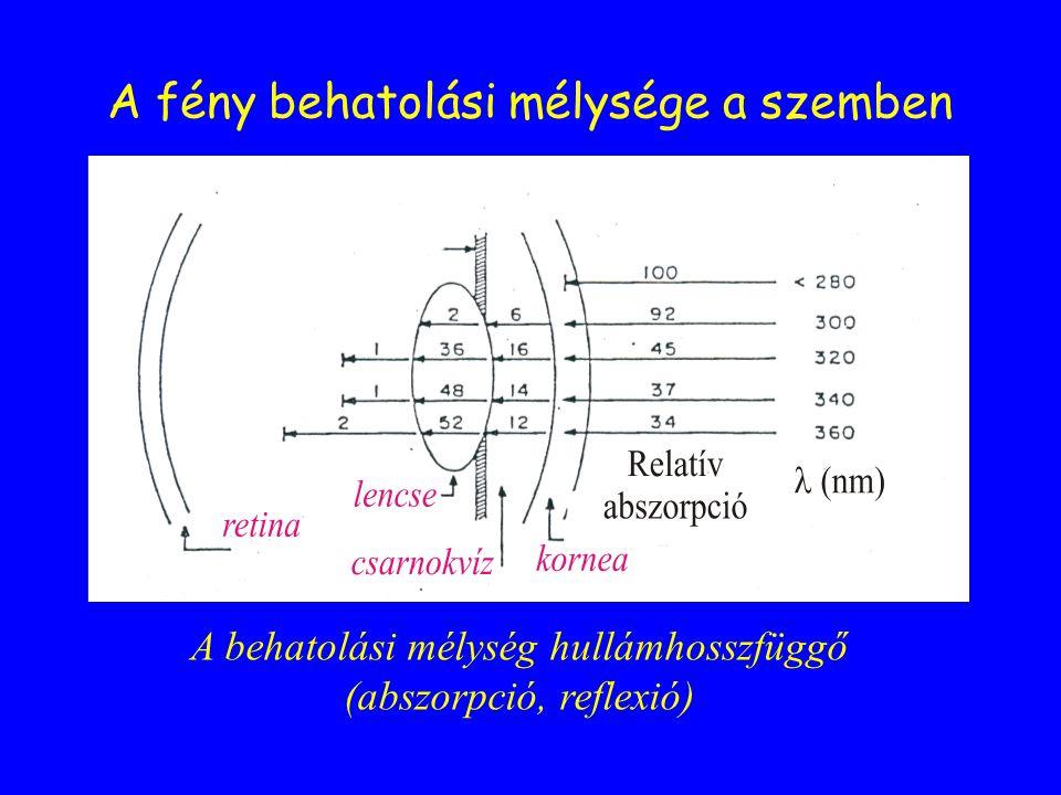 Fényt elnyelő molekulák (kromofórok) az emberi szervezetben Endogén kromofórokExogén kromofórok pl.