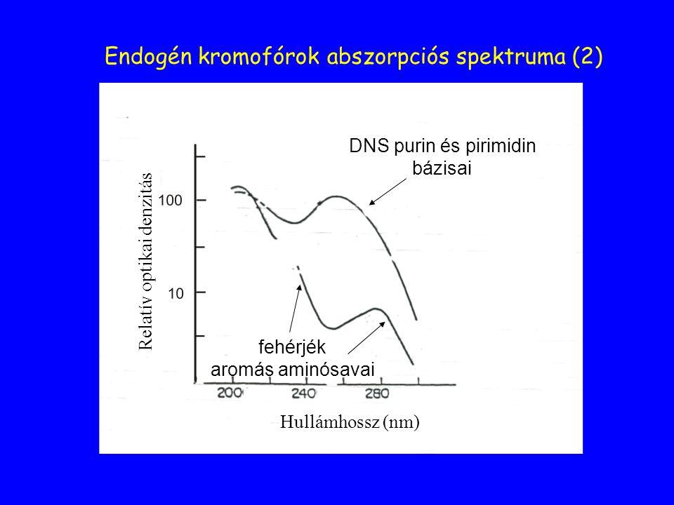 Endogén kromofórok abszorpciós spektruma (2) DNS purin és pirimidin bázisai fehérjék aromás aminósavai Hullámhossz (nm) Relatív optikai denzitás