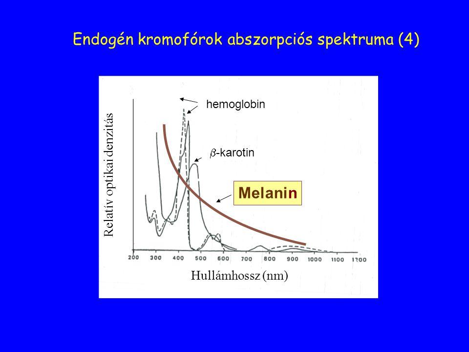 Hullámhossz (nm) Endogén kromofórok abszorpciós spektruma (4) hemoglobin  -karotin Melanin Relatív optikai denzitás