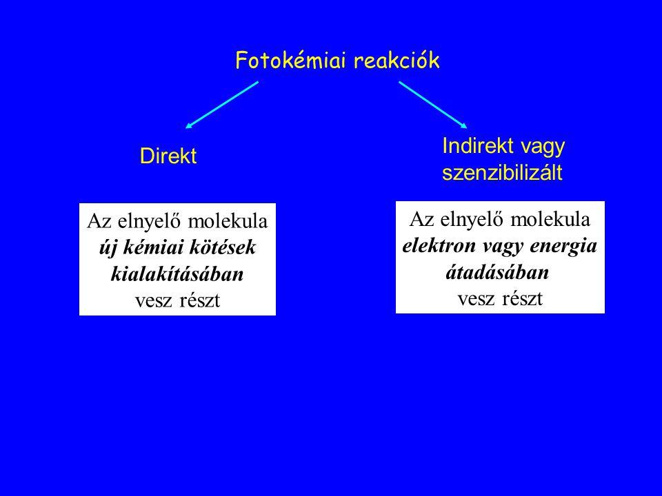 Fotokémiai reakciók Direkt Indirekt vagy szenzibilizált Az elnyelő molekula új kémiai kötések kialakításában vesz részt Az elnyelő molekula elektron v