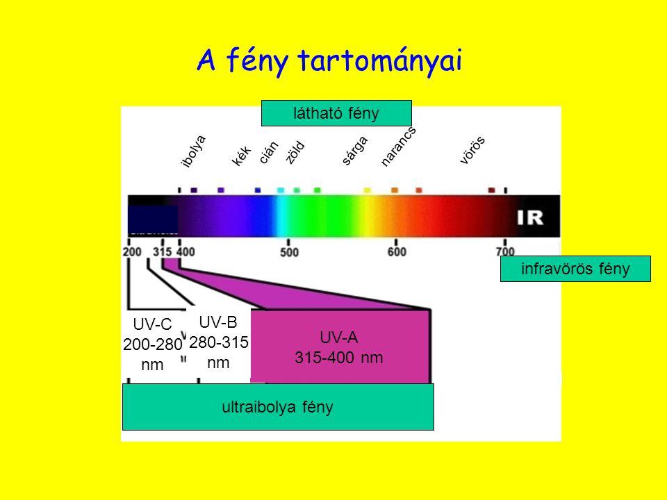 narancs sárga zöld cián kék ibolya vörös látható fény UV-A 315-400 nm UV-B 280-315 nm UV-C 200-280 nm ultraibolya fény A fény tartományai infravörös f