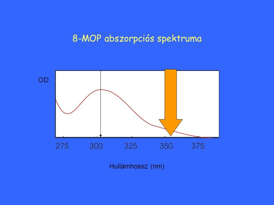 8-MOP abszorpciós spektruma OD Hullámhossz (nm)