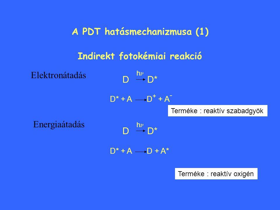 A PDT hatásmechanizmusa (1) Indirekt fotokémiai reakció Energiaátadás Elektronátadás D D* h D* + A D + A* Terméke : reaktív oxigén D D* h D* + A D + + A - Terméke : reaktív szabadgyök