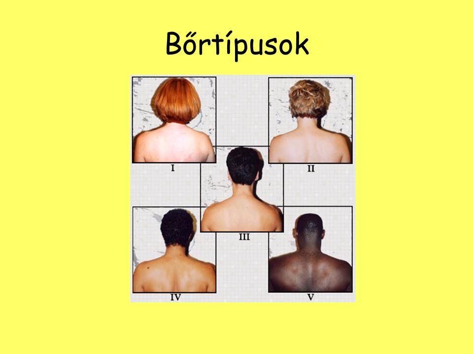 Bőrtípusok
