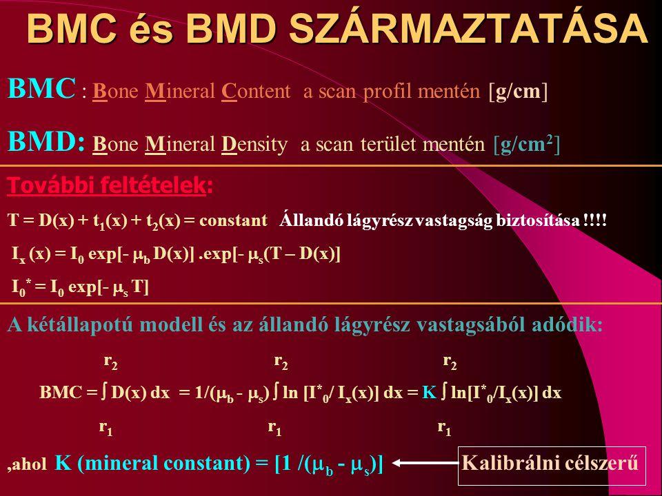 BMC és BMD SZÁRMAZTATÁSA BMC : Bone Mineral Content a scan profil mentén [g/cm] BMD: Bone Mineral Density a scan terület mentén [g/cm 2 ] További felt