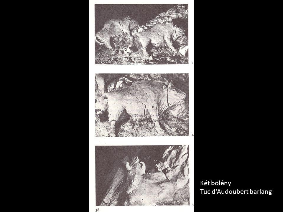 Két bölény Tuc d'Audoubert barlang