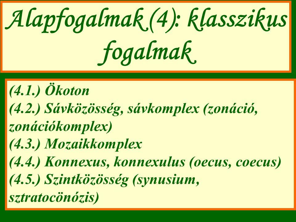 Alapfogalmak (4): klasszikus fogalmak (4.1.) Ökoton (4.2.) Sávközösség, sávkomplex (zonáció, zonációkomplex) (4.3.) Mozaikkomplex (4.4.) Konnexus, konnexulus (oecus, coecus) (4.5.) Szintközösség (synusium, sztratocönózis)