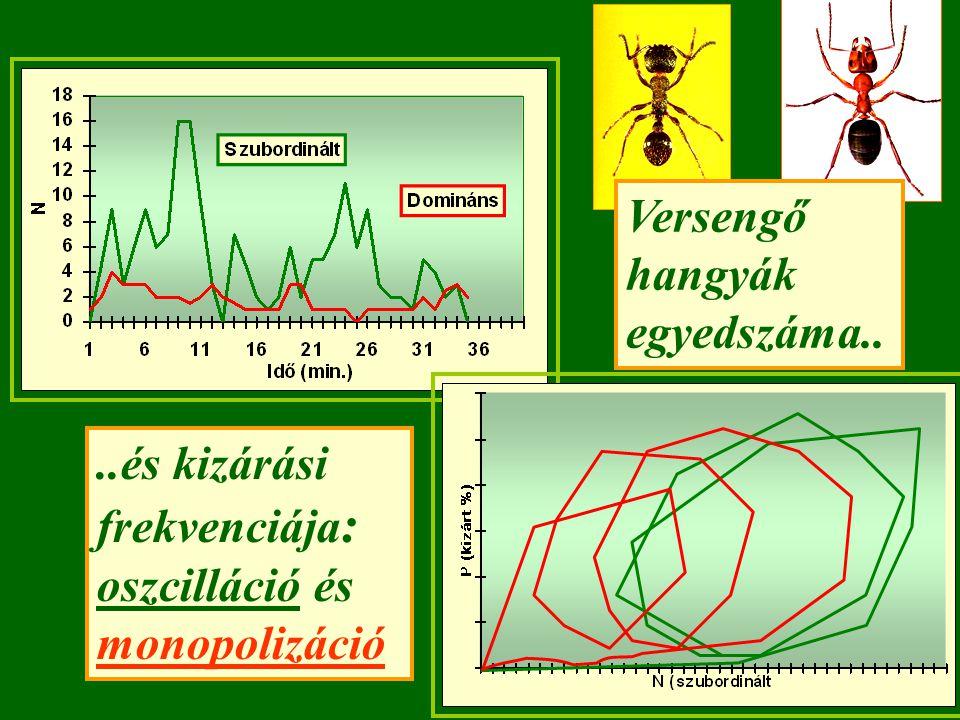 ..és kizárási frekvenciája : oszcilláció és monopolizáció Versengő hangyák egyedszáma..