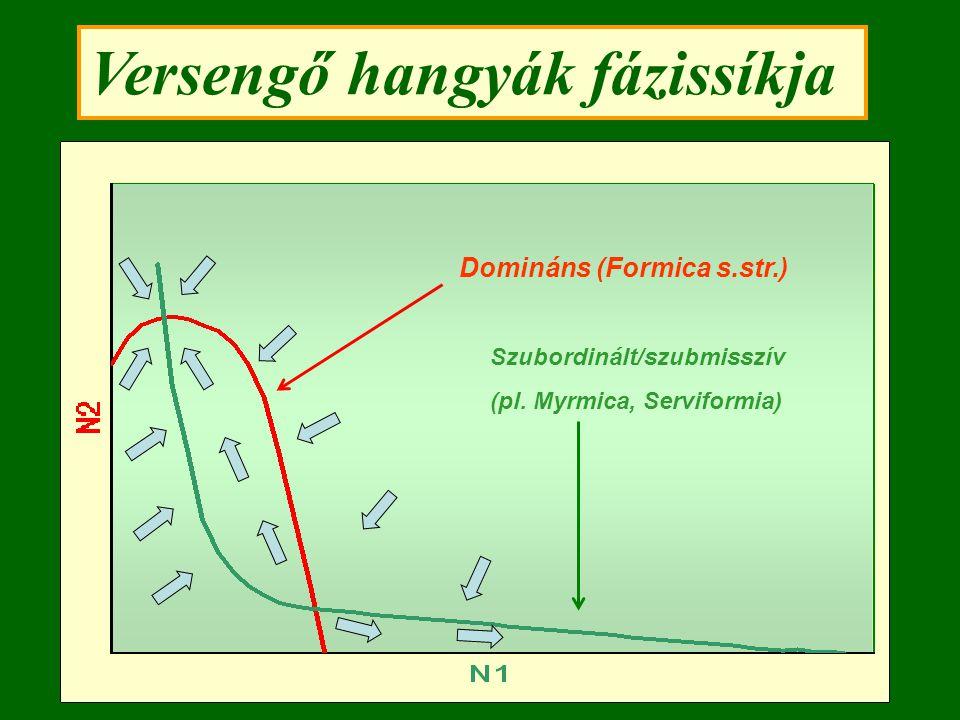 Versengő hangyák fázissíkja Domináns (Formica s.str.) Szubordinált/szubmisszív (pl. Myrmica, Serviformia)