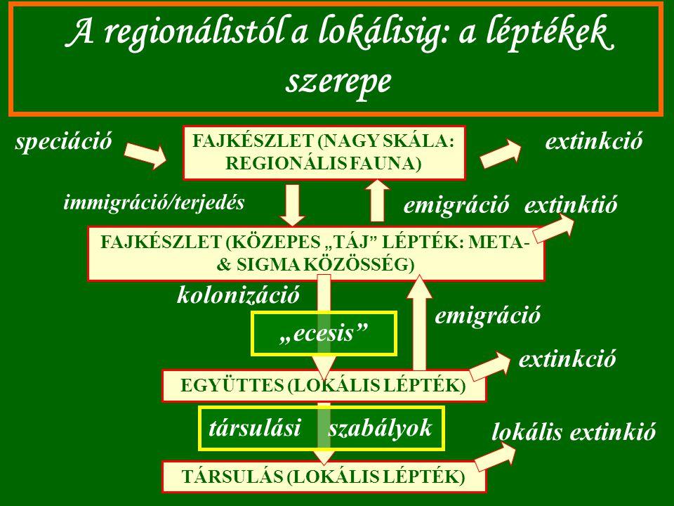 """A regionálistól a lokálisig: a léptékek szerepe FAJKÉSZLET (NAGY SKÁLA: REGIONÁLIS FAUNA) FAJKÉSZLET (KÖZEPES """" TÁJ """" LÉPTÉK: META- & SIGMA KÖZÖSSÉG)"""
