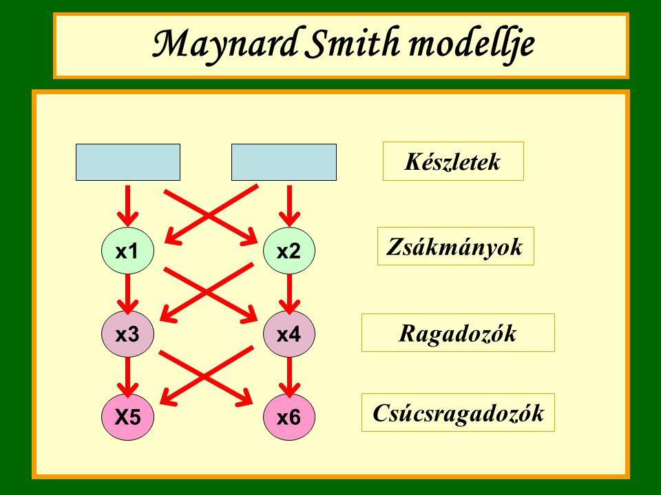 Maynard Smith modellje Készletek Zsákmányok Ragadozók Csúcsragadozók x1x2 x3x4 X5x6