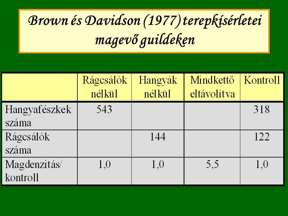 Brown és Davidson (1977) terepkísérletei magevő guildeken