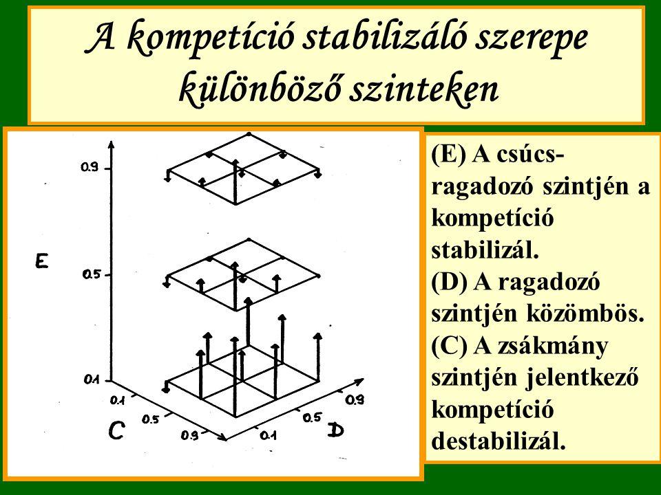 A kompetíció stabilizáló szerepe különböző szinteken (E) A csúcs- ragadozó szintjén a kompetíció stabilizál. (D) A ragadozó szintjén közömbös. (C) A z