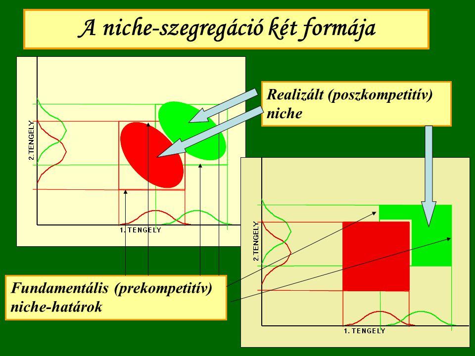 A niche-szegregáció két formája Fundamentális (prekompetitív) niche-határok Realizált (poszkompetitív) niche