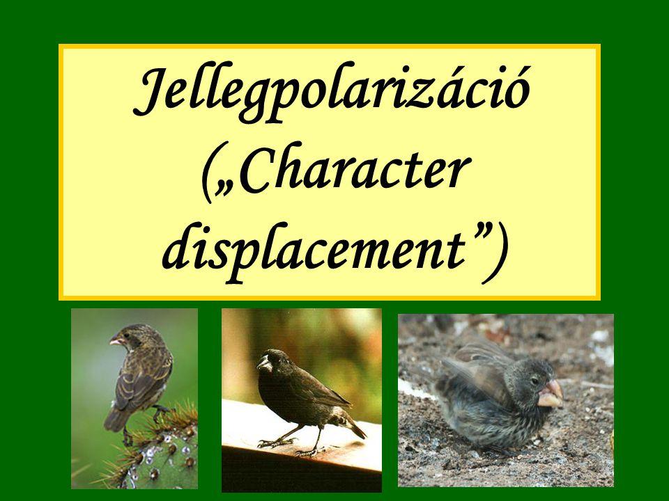"""Jellegpolarizáció (""""Character displacement"""")"""