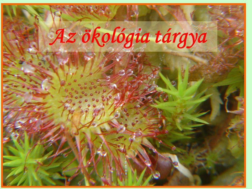Az ökológia különböző megfogalmazásai Szerv.+ Környezet Natural history SIOGyak.+elt.