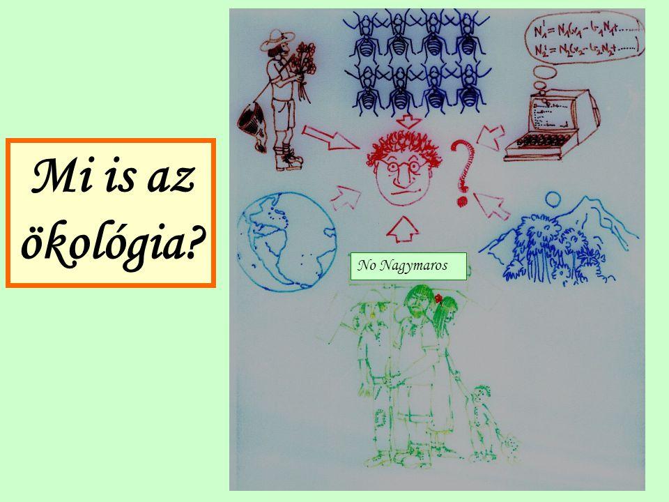 No Nagymaros Mi is az ökológia?