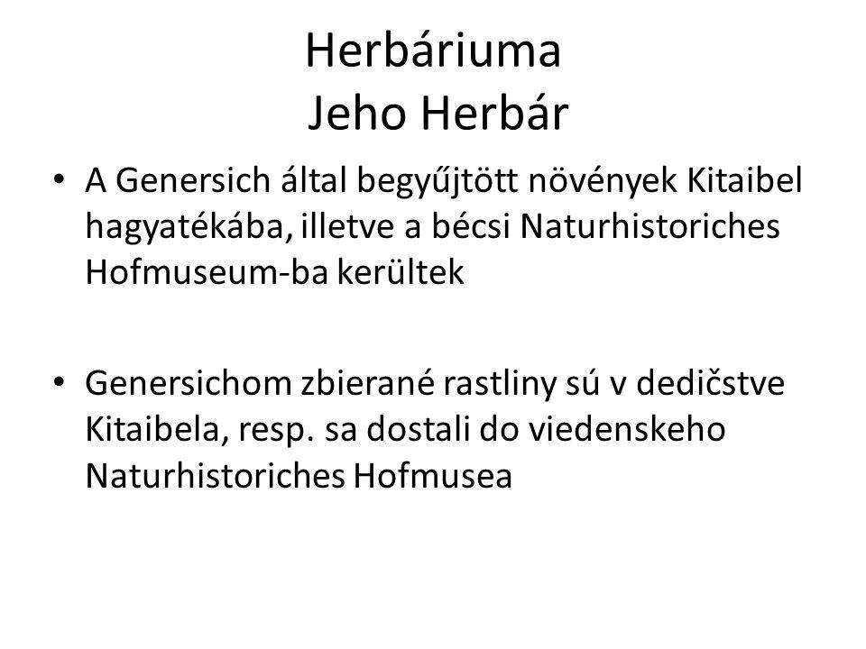 Herbáriuma Jeho Herbár A Genersich által begyűjtött növények Kitaibel hagyatékába, illetve a bécsi Naturhistoriches Hofmuseum-ba kerültek Genersichom