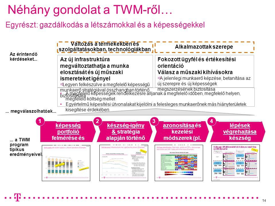 14 Néhány gondolat a TWM-ről… Jelenlegi képesség portfolió felmérése és előrejelzése Aktuális készség-igény & stratégia alapján történő előrejelzése K
