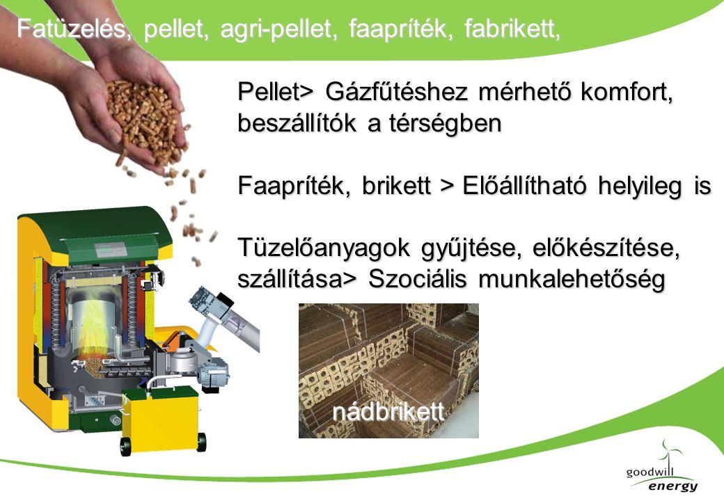 Fatüzelés, pellet, agri-pellet, faapríték, fabrikett, nádbrikett Pellet> Gázfűtéshez mérhető komfort, beszállítók a térségben Faapríték, brikett > Előállítható helyileg is Tüzelőanyagok gyűjtése, előkészítése, szállítása> Szociális munkalehetőség