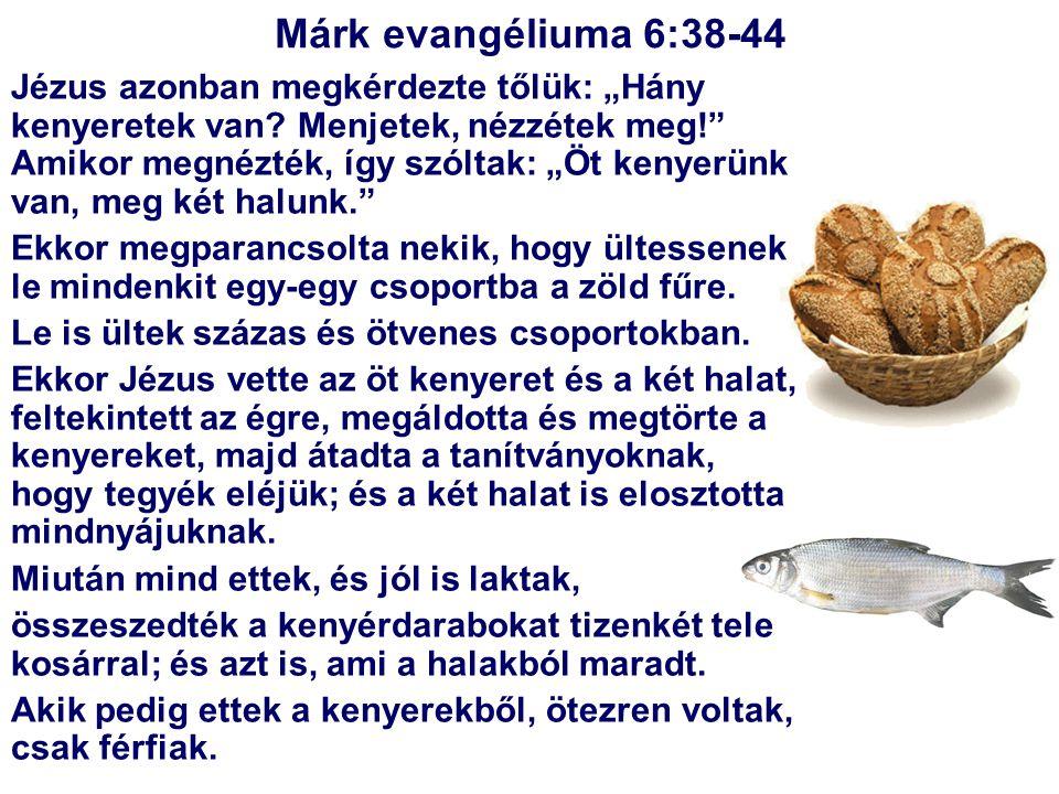 """Márk evangéliuma 6:38-44 Jézus azonban megkérdezte tőlük: """"Hány kenyeretek van? Menjetek, nézzétek meg!"""" Amikor megnézték, így szóltak: """"Öt kenyerünk"""