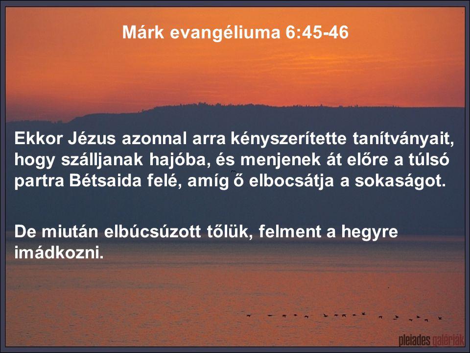 Ekkor Jézus azonnal arra kényszerítette tanítványait, hogy szálljanak hajóba, és menjenek át előre a túlsó partra Bétsaida felé, amíg ő elbocsátja a s