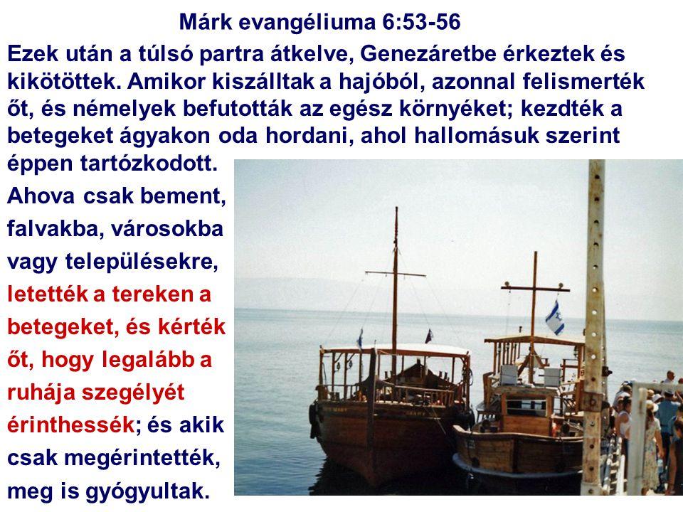 Ezek után a túlsó partra átkelve, Genezáretbe érkeztek és kikötöttek. Amikor kiszálltak a hajóból, azonnal felismerték őt, és némelyek befutották az e
