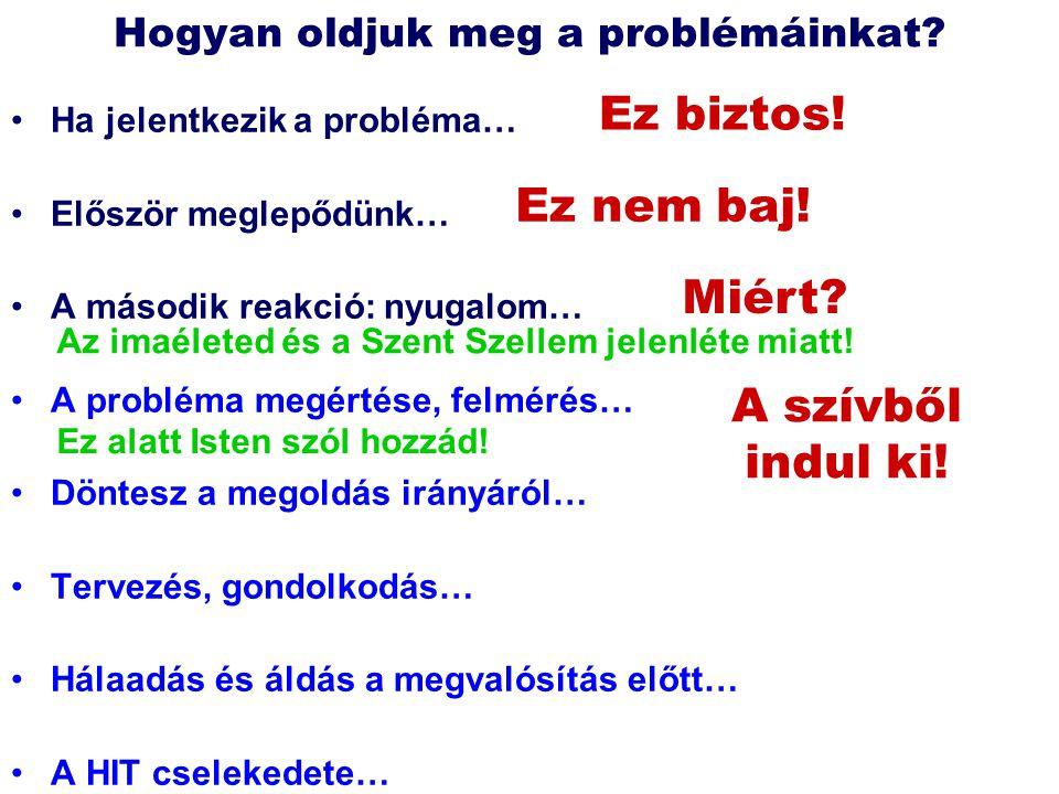 Ha jelentkezik a probléma… Először meglepődünk… A második reakció: nyugalom… A probléma megértése, felmérés… Döntesz a megoldás irányáról… Tervezés, g