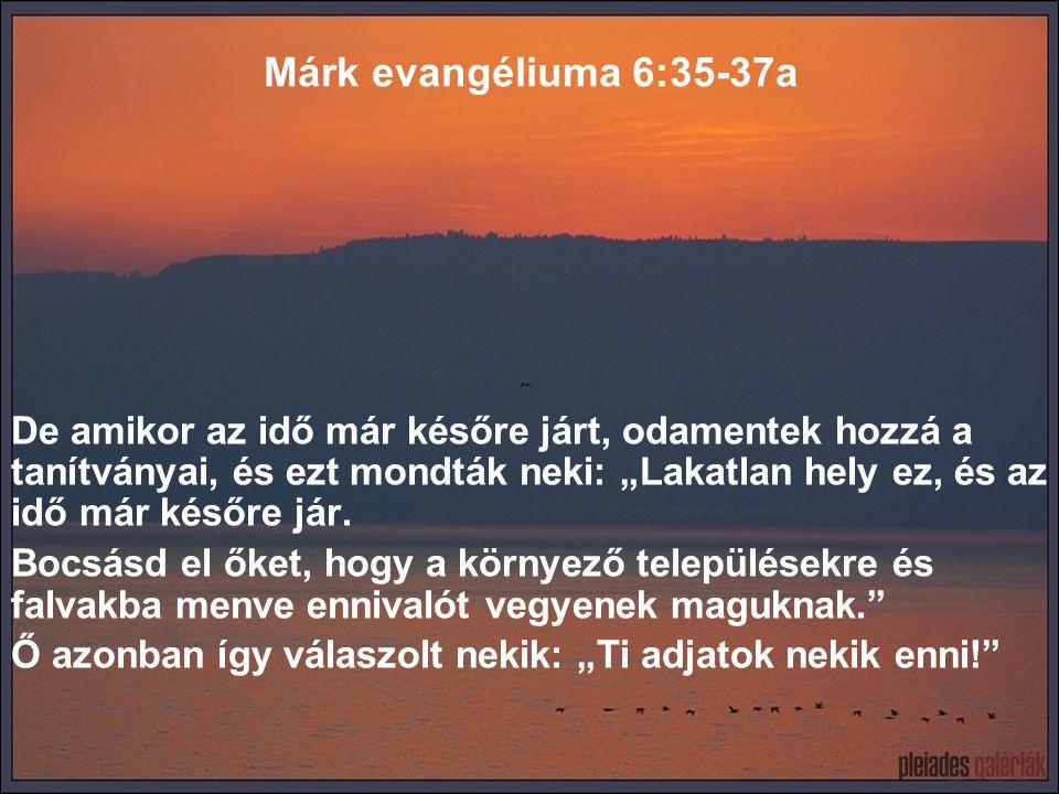 """Márk evangéliuma 6:37b Mire ők ezt mondták neki: """"Talán mi menjünk el, és vegyünk kétszáz dénárért kenyeret, hogy enni adhassunk nekik?"""