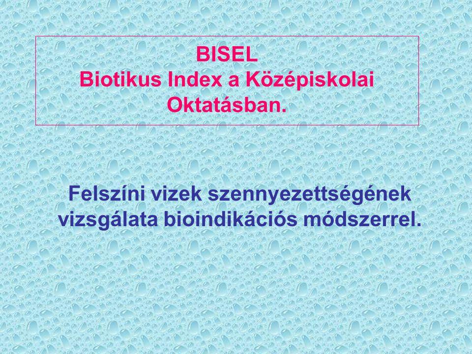 A módszer kialakulása: Belga Biotikus Index:  Makrogerinctelenek összegyűjtése.