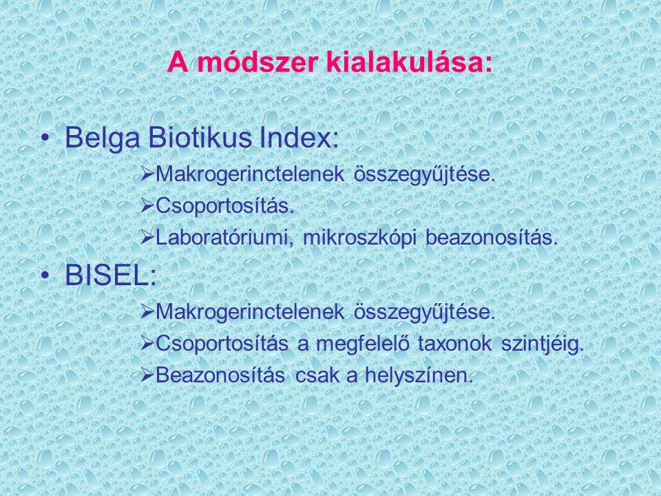 Röviden eddigi munkánkról 2001.óta végzünk BISEL- méréseket a Lebuki patakon.
