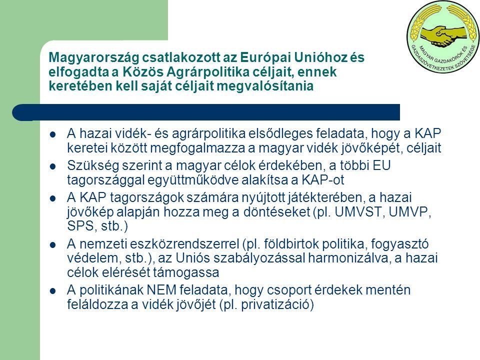 Az hazai vidék fejlődését alapvetően meghatározó, eldöntendő kérdések az SPS-es kapcsolatban, a regionalizáció, ….