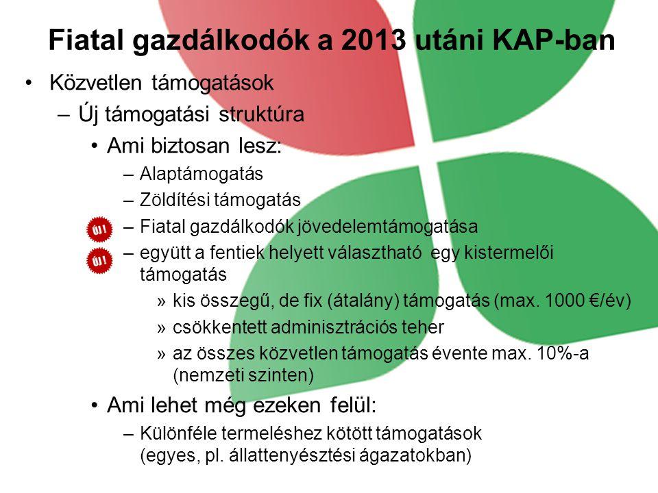 Fiatal gazdálkodók a 2013 utáni KAP-ban Közvetlen támogatások –Új támogatási struktúra Ami biztosan lesz: –Alaptámogatás –Zöldítési támogatás –Fiatal