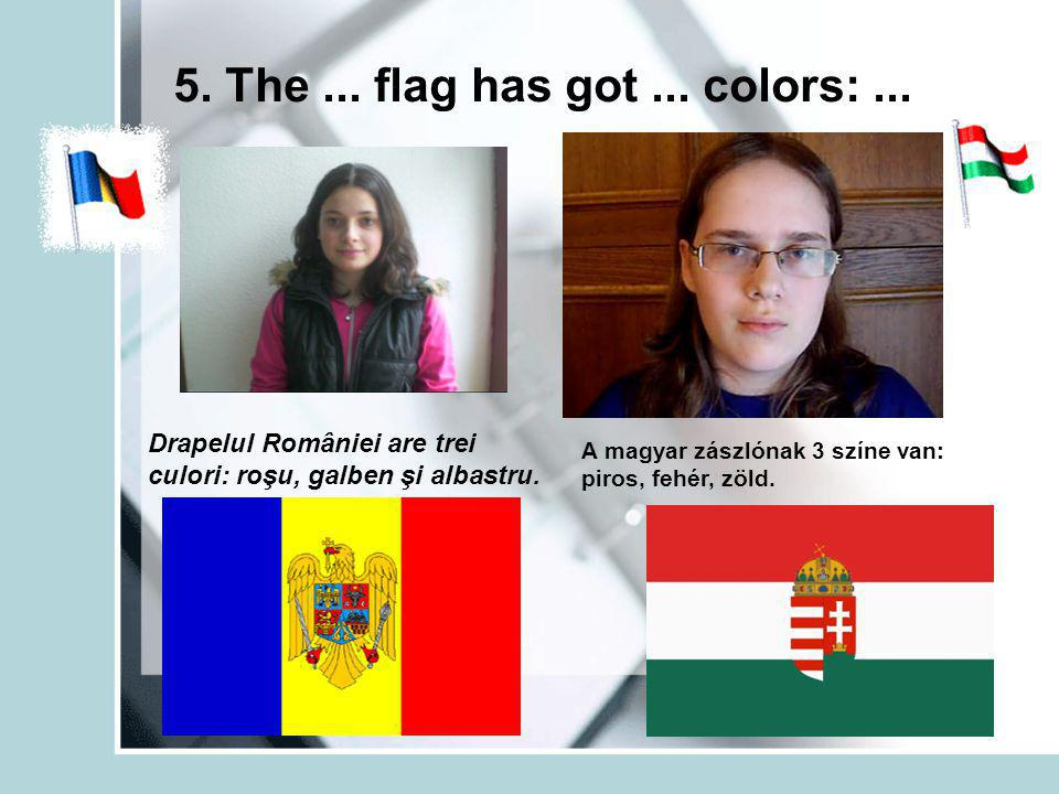 5. The... flag has got... colors:...