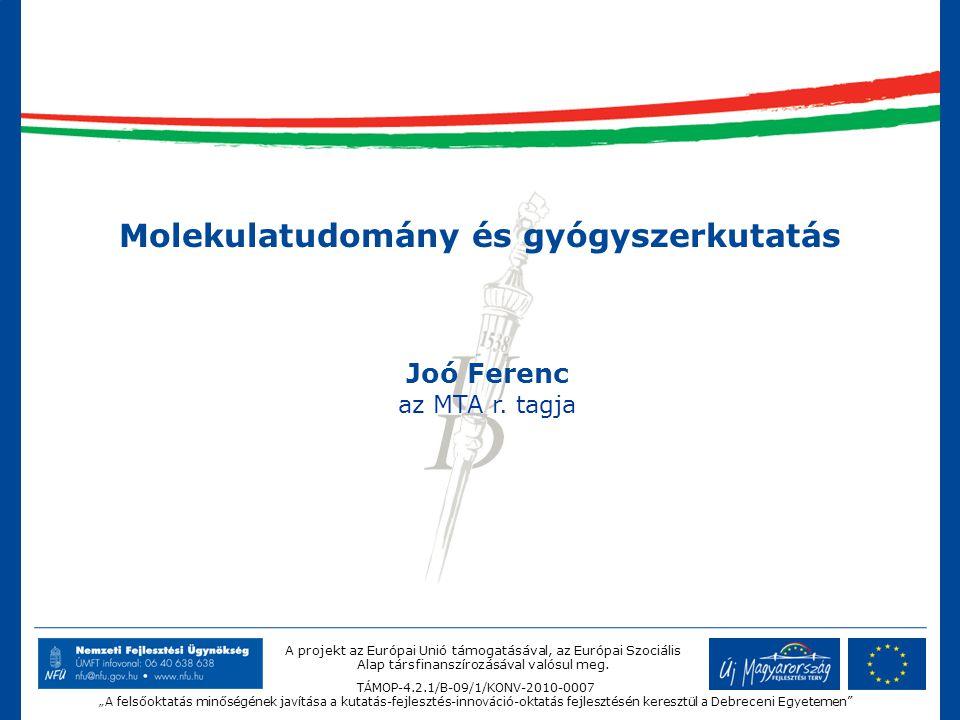 """A projekt az Európai Unió támogatásával, az Európai Szociális Alap társfinanszírozásával valósul meg. TÁMOP-4.2.1/B-09/1/KONV-2010-0007 """"A felsőoktatá"""