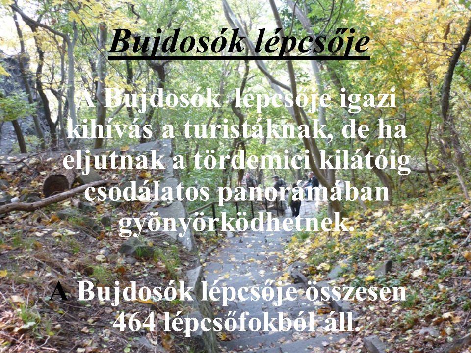 Rózsakő A hegyoldalról lehasadt bazalttuskó valószínűleg Kisfaludy Rózájáról kapta a nevét. A néphit azután fontos szerepet adott a kőnek: a hagyomány