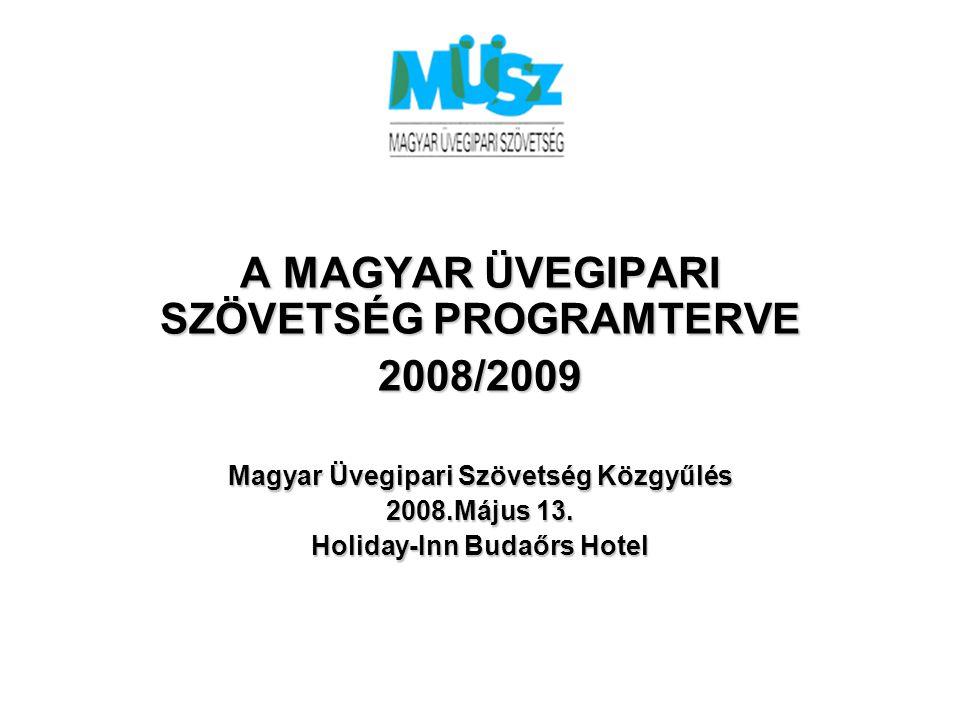 A MAGYAR ÜVEGIPARI SZÖVETSÉG PROGRAMTERVE 2008/2009 Magyar Üvegipari Szövetség Közgyűlés 2008.Május 13. Holiday-Inn Budaőrs Hotel