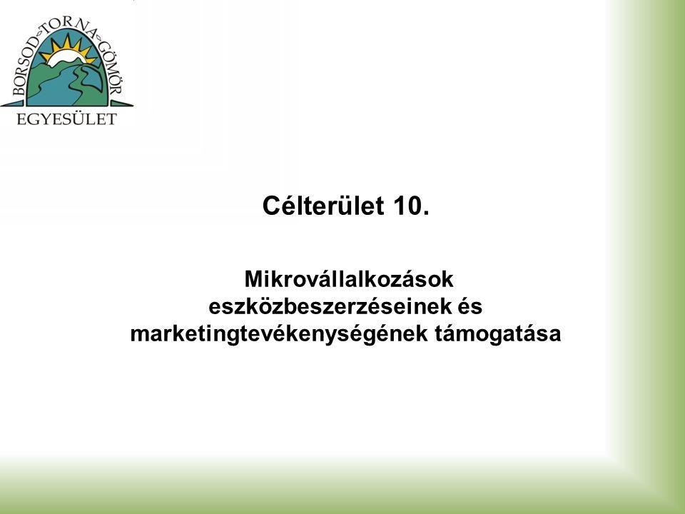 Célterület 10. Mikrovállalkozások eszközbeszerzéseinek és marketingtevékenységének támogatása