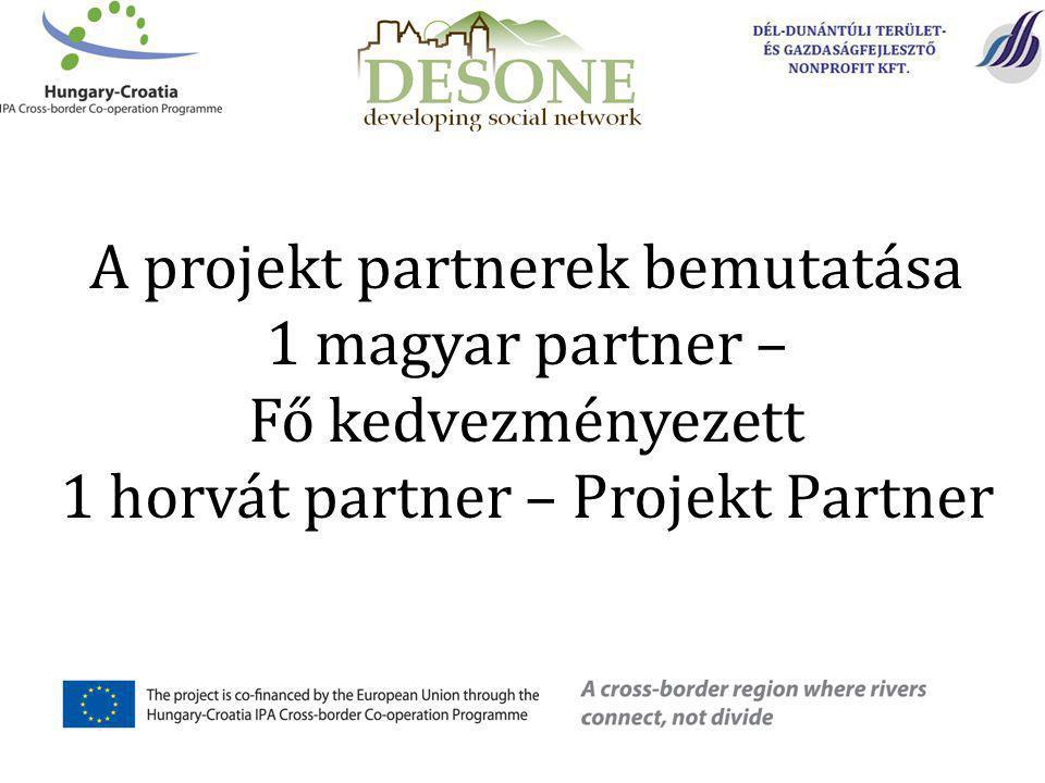 A projekt partnerek bemutatása 1 magyar partner – Fő kedvezményezett 1 horvát partner – Projekt Partner