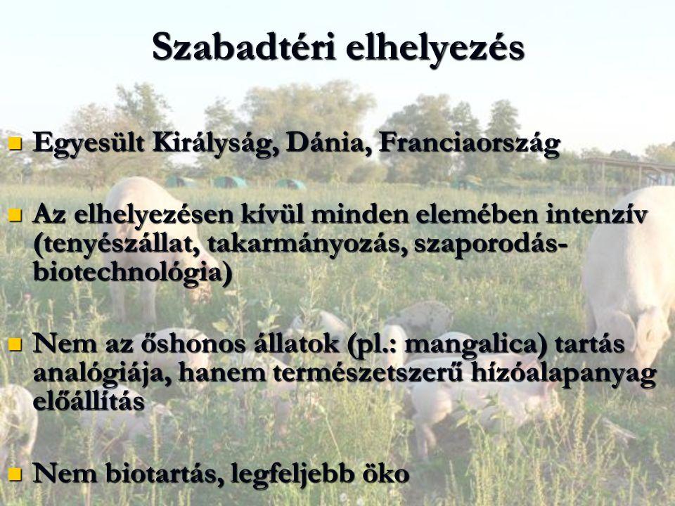 Szabadtéri elhelyezés Egyesült Királyság, Dánia, Franciaország Egyesült Királyság, Dánia, Franciaország Az elhelyezésen kívül minden elemében intenzív (tenyészállat, takarmányozás, szaporodás- biotechnológia) Az elhelyezésen kívül minden elemében intenzív (tenyészállat, takarmányozás, szaporodás- biotechnológia) Nem az őshonos állatok (pl.: mangalica) tartás analógiája, hanem természetszerű hízóalapanyag előállítás Nem az őshonos állatok (pl.: mangalica) tartás analógiája, hanem természetszerű hízóalapanyag előállítás Nem biotartás, legfeljebb öko Nem biotartás, legfeljebb öko
