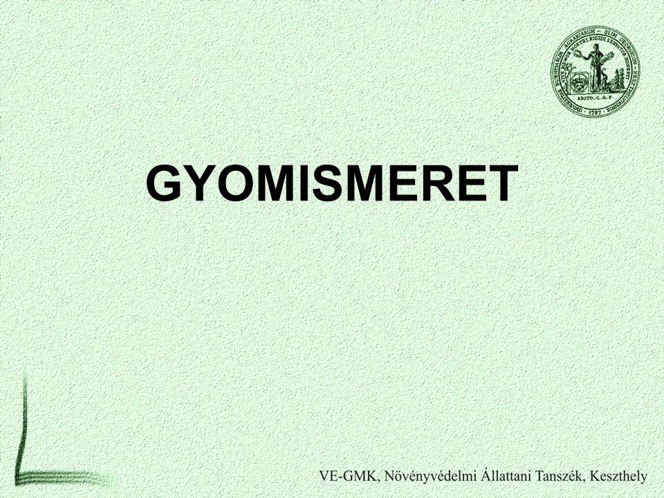 GYOMISMERET