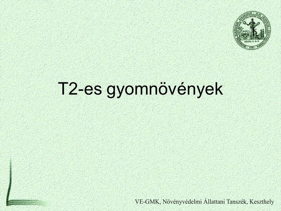 T2-es gyomnövények