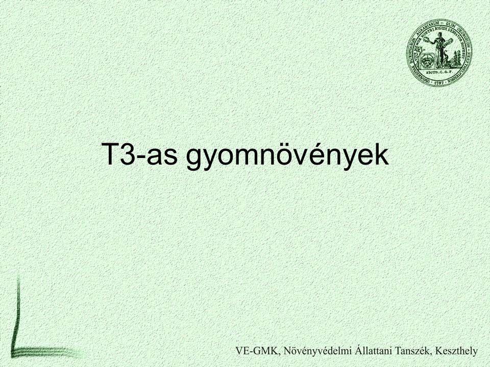T3-as gyomnövények