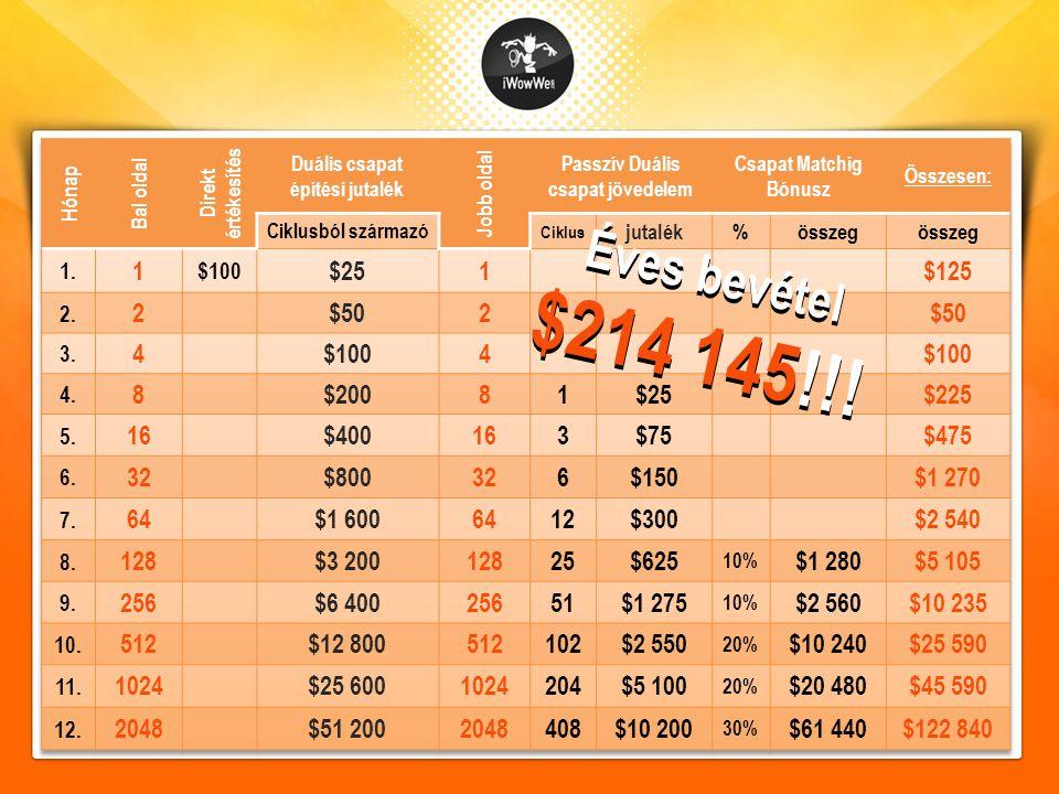 Éves bevétel $214 145!!!