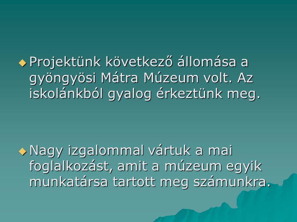  Projektünk következő állomása a gyöngyösi Mátra Múzeum volt. Az iskolánkból gyalog érkeztünk meg.  Nagy izgalommal vártuk a mai foglalkozást, amit